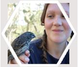 volunteer-research-finch-galapagos