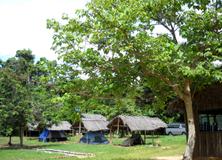 Carnivores of Madagascar, Accommodation