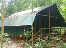 Rainforest Accommodation, Australia