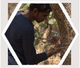 Volunteer engages in trunk measurements