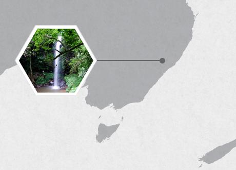 Watagan National Park, Australia