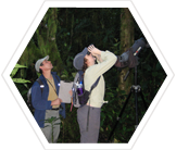 Volunteers on a bird survey in rainforest, Ecuador