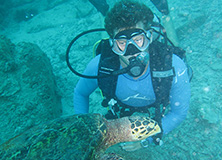 Scuba diver and sea turtle, Seychelles