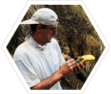 canary-islands-archaeology-earthwatch