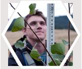 A volunteer measures the height of an aspen sapling.