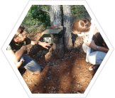 Volunteers checking a camera trap