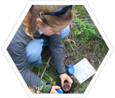 science-soil-sample-maine-acadia-earthwatch