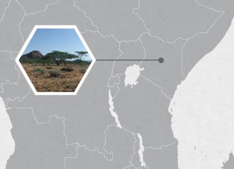 Wamba, Samburu District, Kenya, East Africa