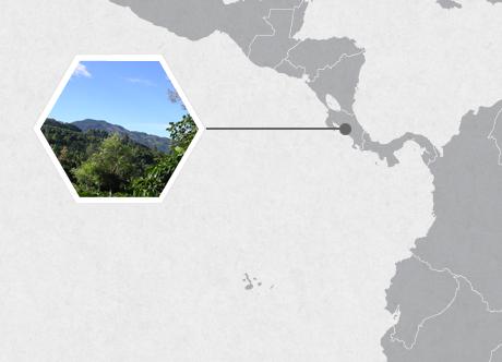 San Marcos de Tarrazu, Costa Rica, Central America
