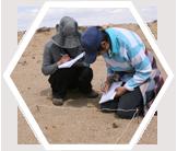 Volunteers recording vegetation, Mongolian steppe