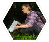 An Earthwatcher checks a trap for small mammals