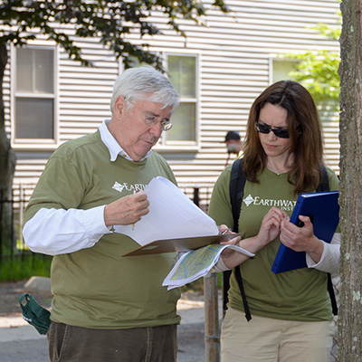 trees-boston-research-charity-donate