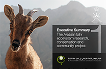 View the Oman Earthwatch Programme reports online now