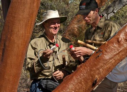 bush-blitz-science-australia