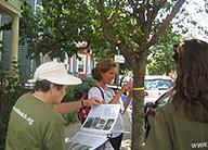trees-research-boston-earthwatch