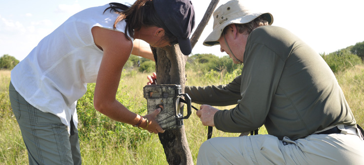 Research team placing a camera trap in the field