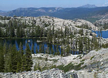 Restoring Sierra Meadows: The Source of California's Water