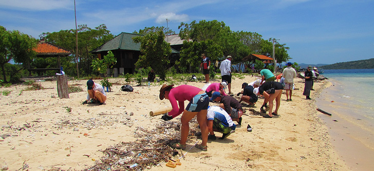 Beach cleanups can help remove debris before it harms wildlife