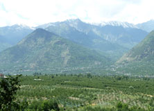 The Indian Himalaya: One of the sites where we explore biodiversity and ecosystem services in agricultural landscapes.