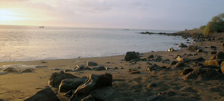 The sun lights up a Galápagos beach.