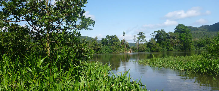 See the Daintree River from a unique perspective