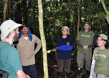 Alcoa fellows measuring trees in the Brazilian rainforest on a facilitated, week-long Earthwatch Expedition in Brazil.