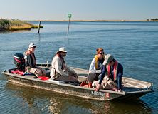 Terrapin conservation project, Barnegat Bay, New Jersey, USA