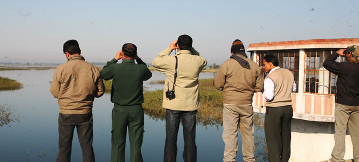The field team records observations of elephant and tigers' habitat and samples vegetation.