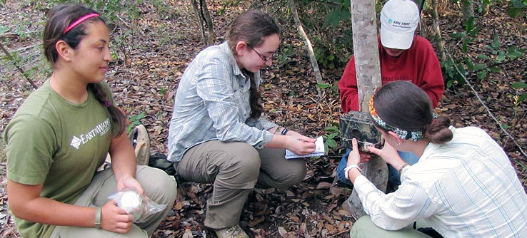 Volunteers check a camera trap in Emas National Park.