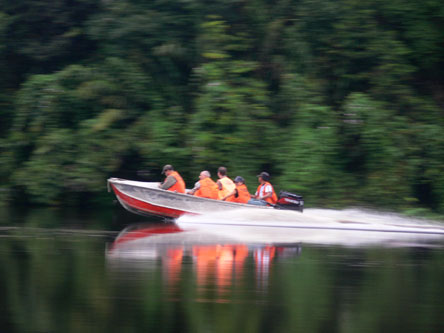 Motor boats are used to take the volunteers to the research areas