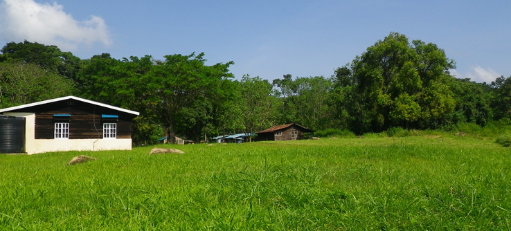 Earthwatch research camp, Budungo Forest, Uganda