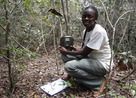 Emerging Scientist grants are available annually to early-career researchers who work with Earthwatch scientists.