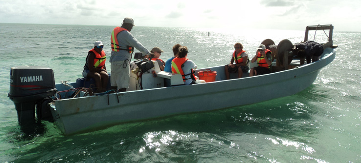 Earthwatch Teen Expedition: Shark Conservation in Belize