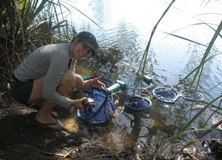 Assissting with freshwater turtle research