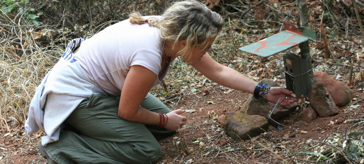 A volunteer checks a camera trap.