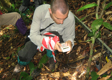 Credit Suisse employees participating on a climate change project in Borneo