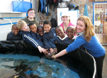 Tamzyn Zweig showing local children an endemic shyshark at the Sharklab at South African Shark Conservancy premises.