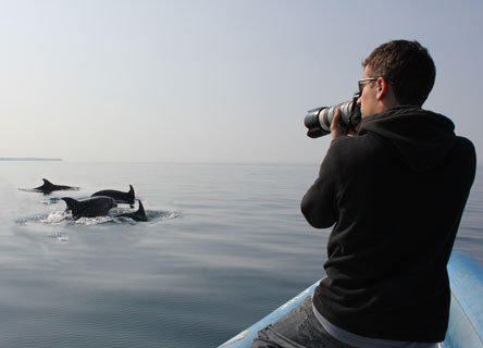 Tilen Genov photographs a group of dolphins. The research team will use the photos to identify individual dolphins by their dorsal fins.