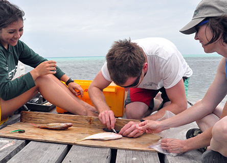 Students who travel with Earthwatch benefit from our more than 40 years experience in creating inspiring opportunities in real-world field research.