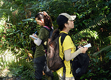 Ernst and Young Employees on Earthwatch expedition collecting data