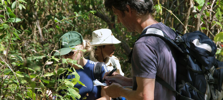 With Dr. Mike Gillman, teams look for butterflies to gauge impact of gases.