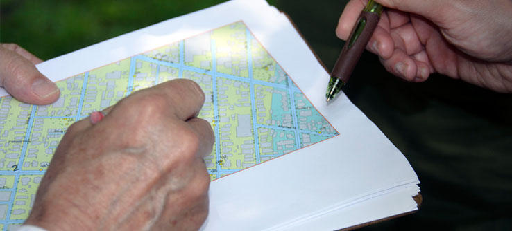 Dots on a map of Cambridge mark the trees a team will monitor.