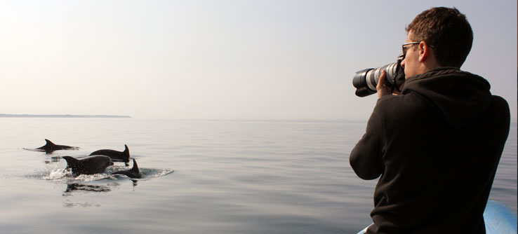 Lead scientist Tilen Genov photographs a group of dolphins.