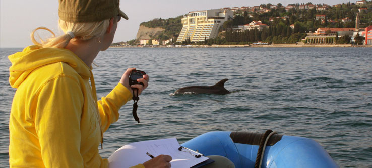 A volunteer records the GPS location of a dolphin sighting.