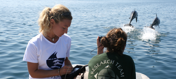 Earthwatch volunteers on a dolphin conservation project, Greece