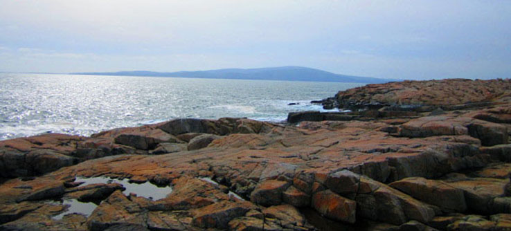 Earthwatch Expedition: Protecting Nature in Acadia National Park