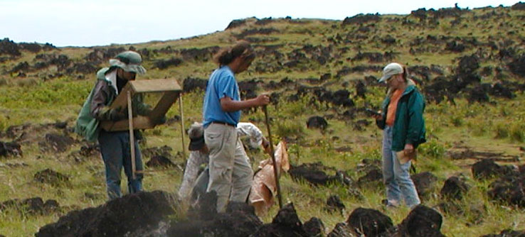 Earthwatch Expedition: Rediscovering the Canary Islands