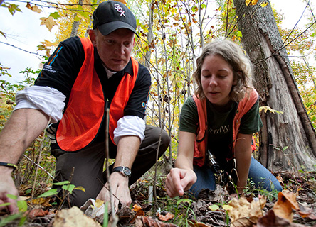 Providing participants with a basic introduction to sustainability and an opportunity to actively participate in an outdoor scientific field research
