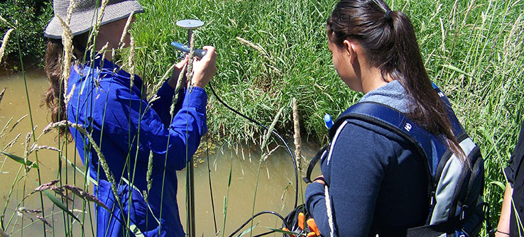 Volunteers measure water depth within groundwater wells.