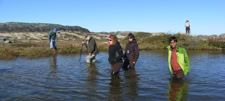 Volunteers collecting data on species and water quality from tundra ponds.